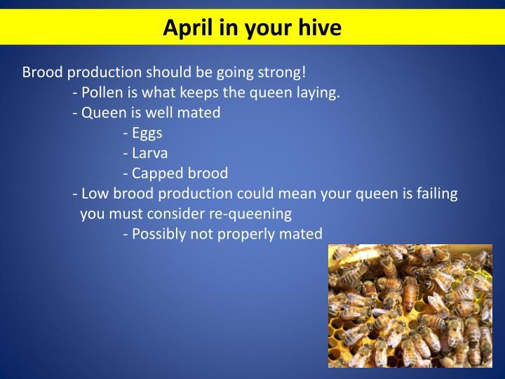 April in