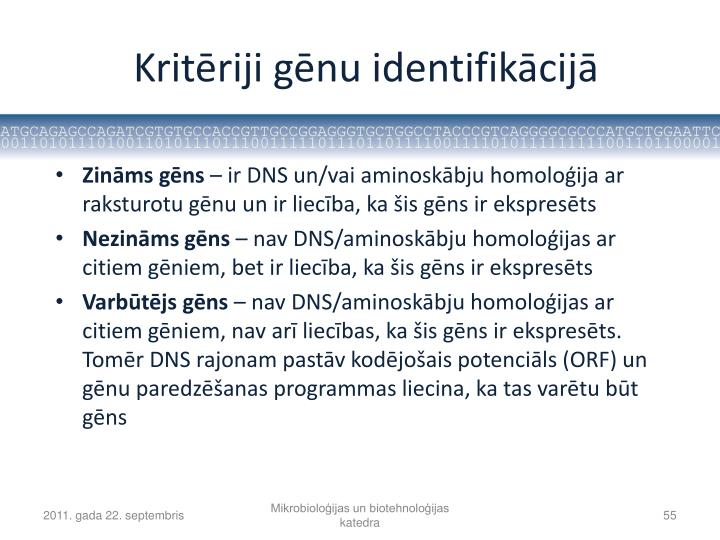 Kritēriji gēnu identifikācijā