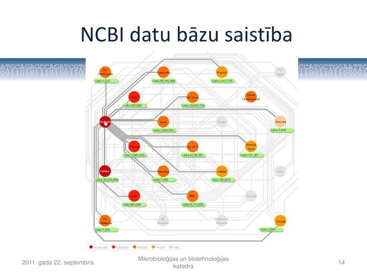NCBI datu bāzu saistība