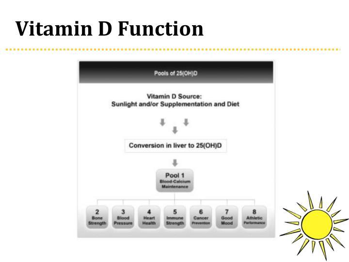 Vitamin D Function