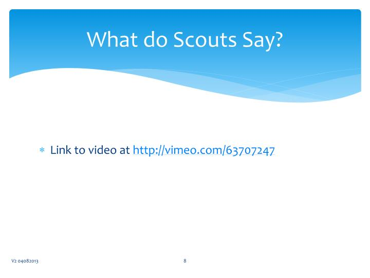 What do Scouts Say?