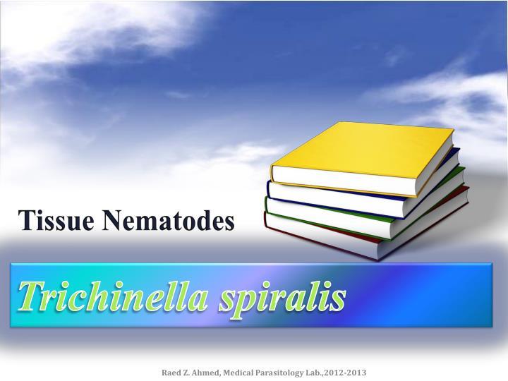 Tissue Nematodes