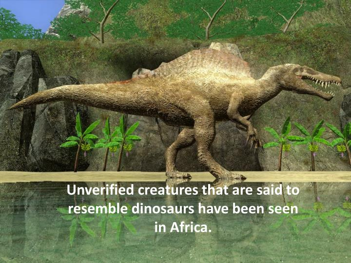 Unverified creatures that are said to resemble dinosaurs have been seen in Africa.