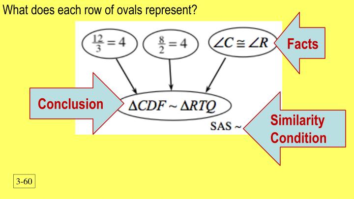 What does each row of ovals represent?