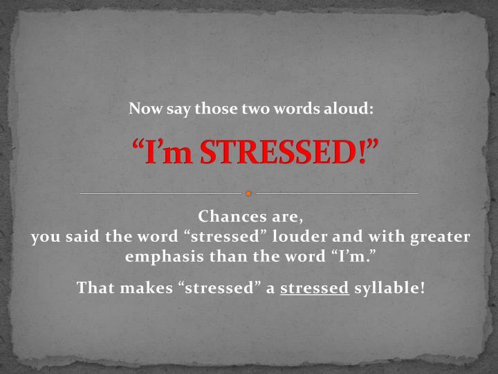 """I'm STRESSED!"""