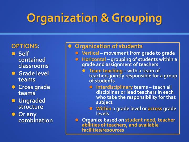 Organization & Grouping