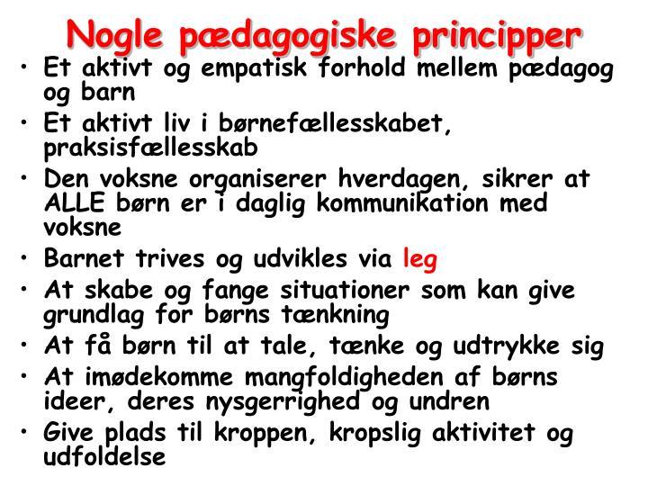 Nogle pædagogiske principper