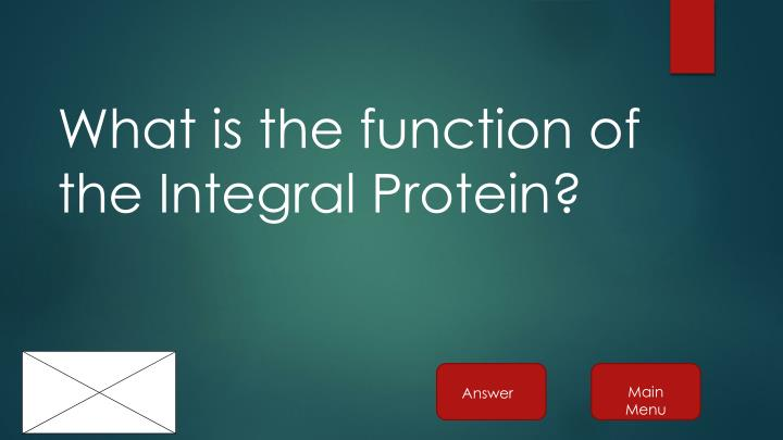 What is the function of the Integral Protein?