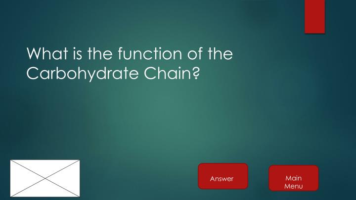 What is the function of the Carbohydrate Chain?