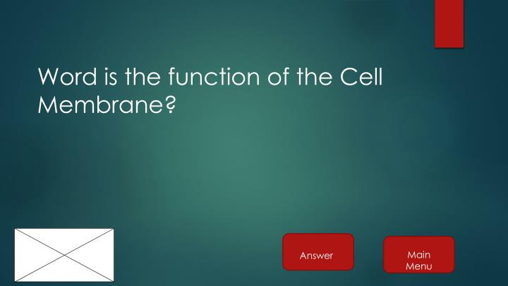 Word is the function of the Cell Membrane?