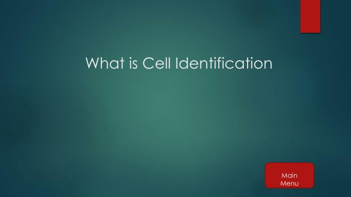 What is Cell Identification