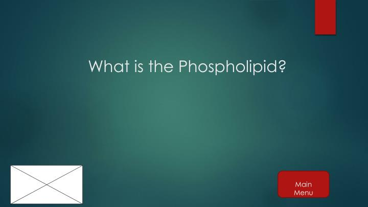 What is the Phospholipid?
