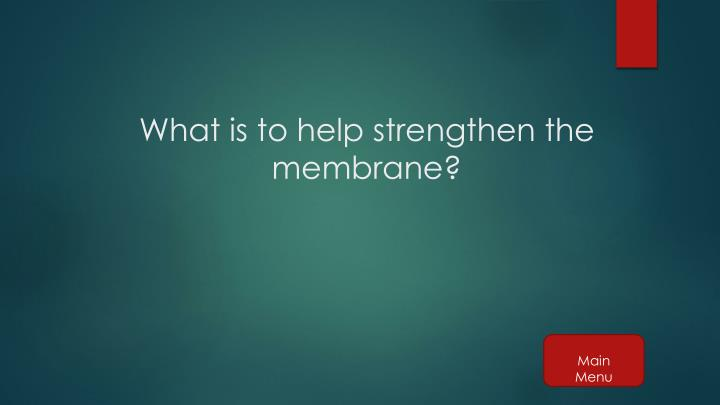 What is to help strengthen the membrane?