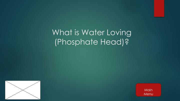 What is Water Loving