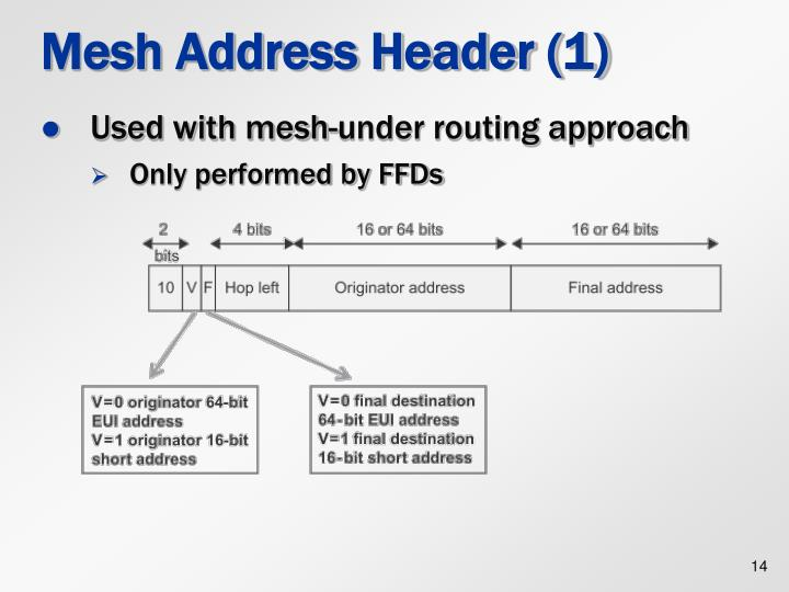 Mesh Address Header (1)