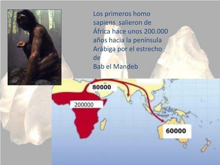 Los primeros homo sapiens  salieron de África hace unos 200.000 años hacia