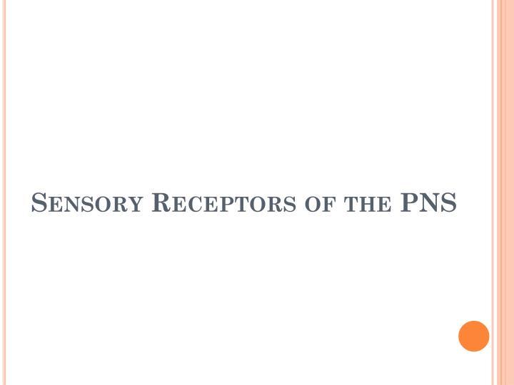 Sensory Receptors of the PNS