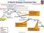 12 month strategic prevention plan