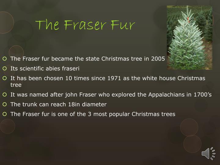 The Fraser Fur