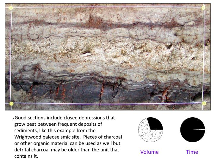 Good sections include closed depressions that grow peat between frequent deposits of sediments, like this example from the Wrightwood