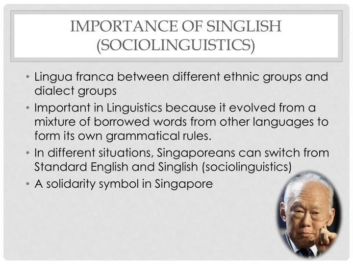 Importance of Singlish