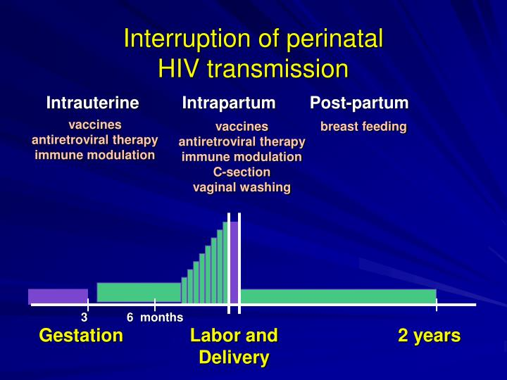 Interruption of perinatal