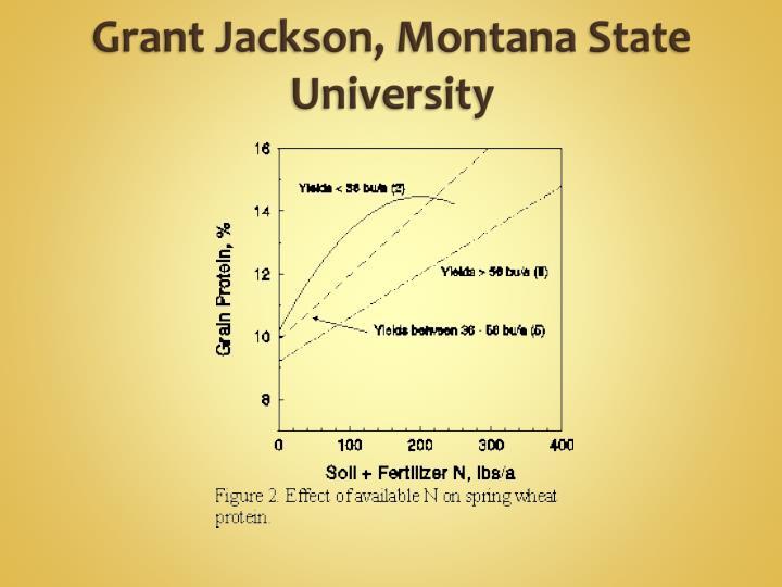 Grant Jackson, Montana State University
