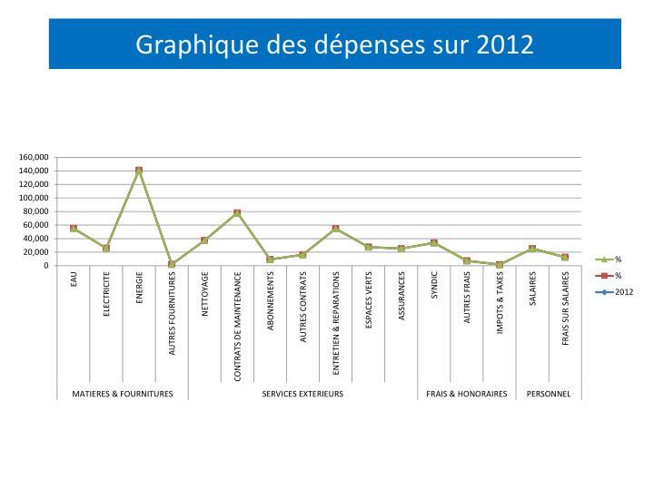 Graphique des dépenses sur 2012