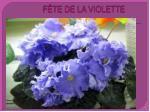 f te de la violette1