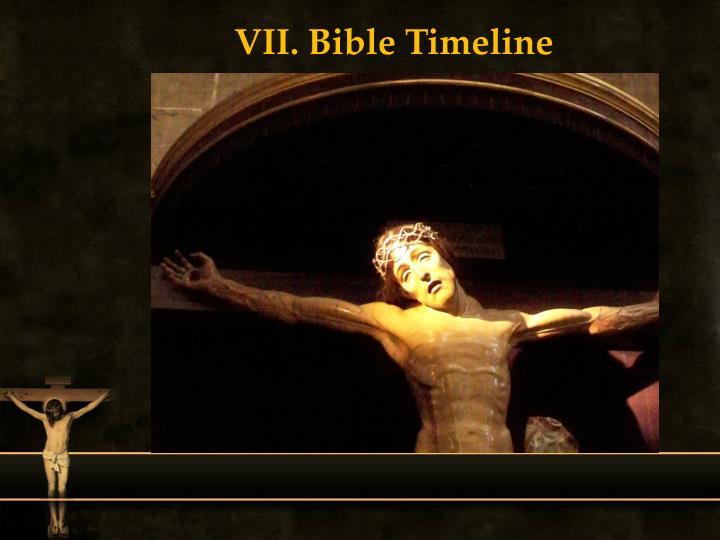 VII. Bible