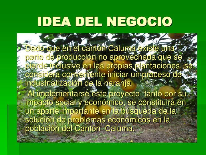 IDEA DEL NEGOCIO