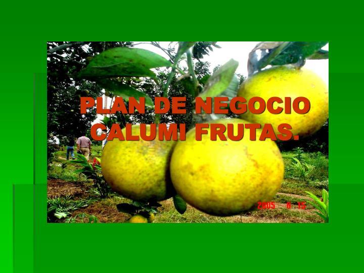 PLAN DE NEGOCIO CALUMI FRUTAS