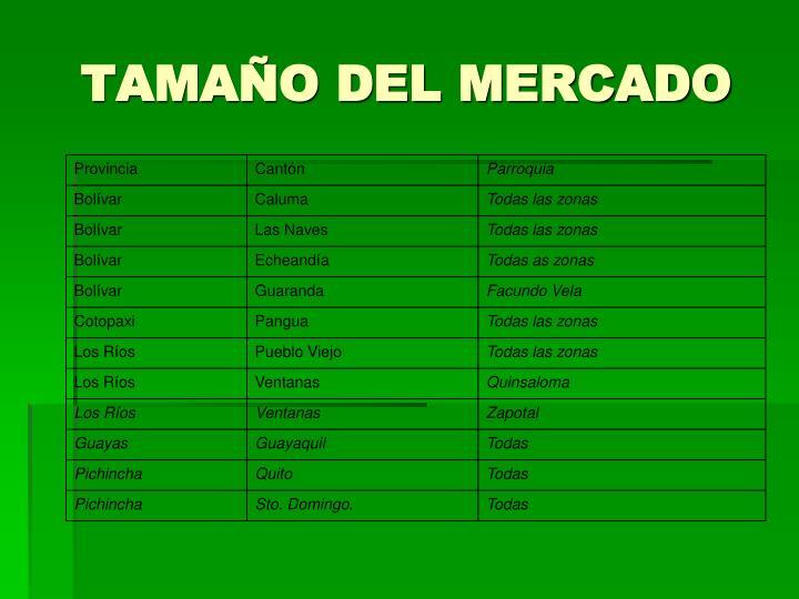 TAMAÑO DEL MERCADO