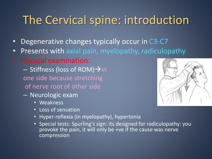 The Cervical spine: introduction