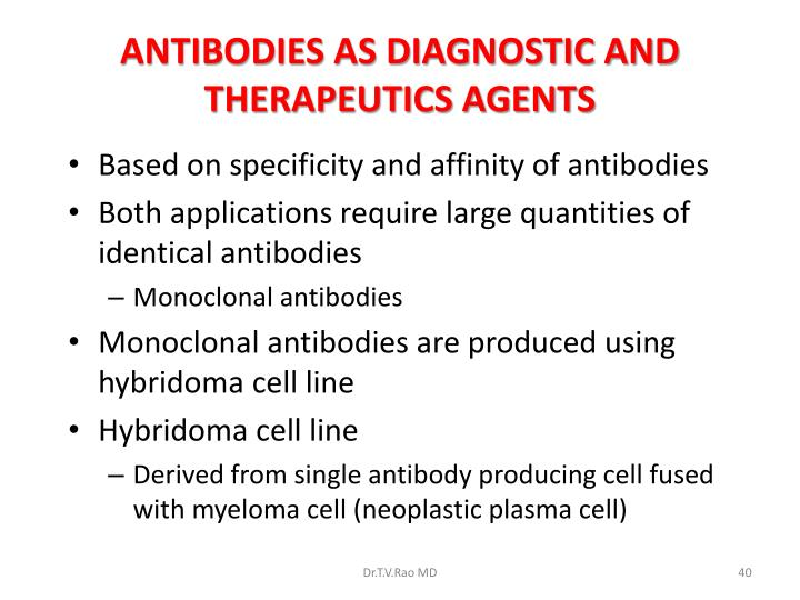 ANTIBODIES AS DIAGNOSTIC AND THERAPEUTICS AGENTS