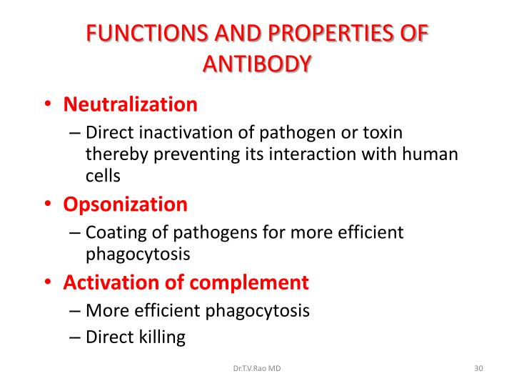 FUNCTIONS AND PROPERTIES OF ANTIBODY