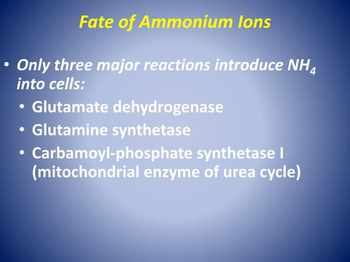 Fate of Ammonium Ions