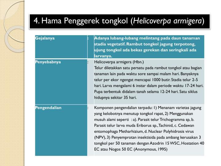 4. Hama