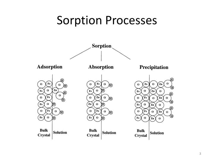 Sorption Processes