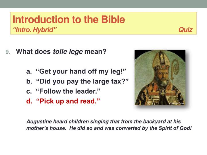 Introduction to the bible christine hayes