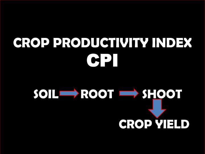 CROP PRODUCTIVITY INDEX