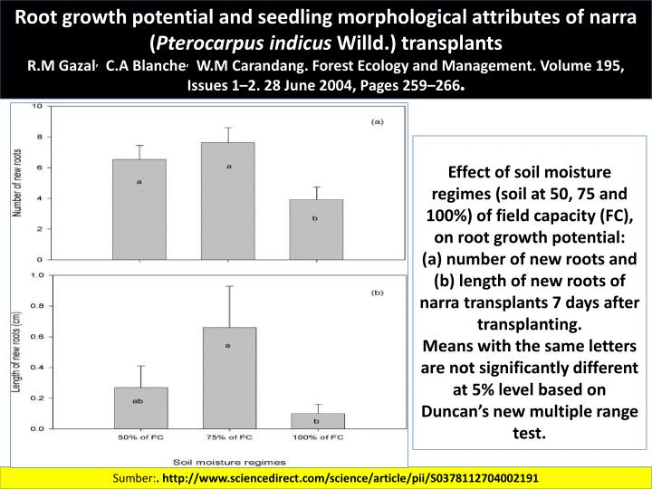 Root growth potential and seedling morphological attributes of