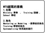 mts 1 ministry training school 2 mentoring or modeling training systematizing
