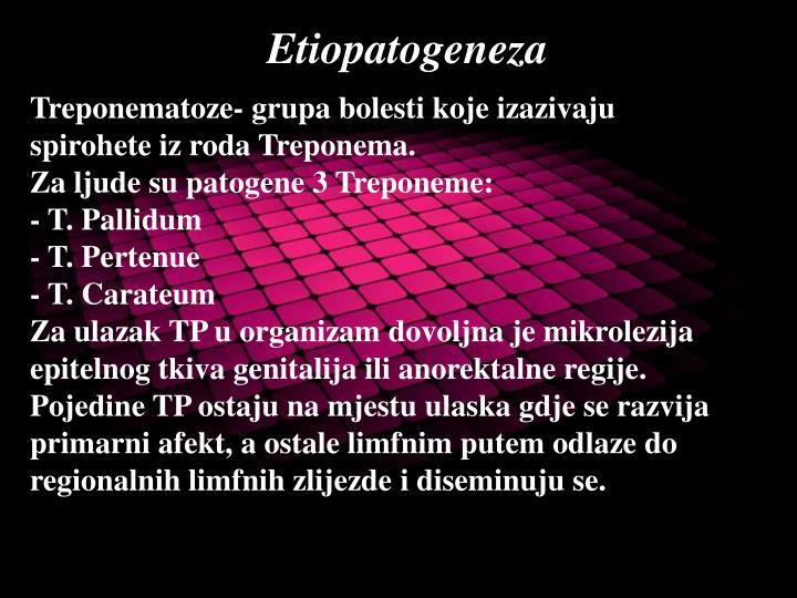 Treponematoze- grupa bolesti koje izazivaju spirohete iz roda Treponema.