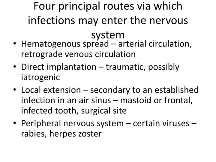 Four principal routes via which infections may enter the nervous system
