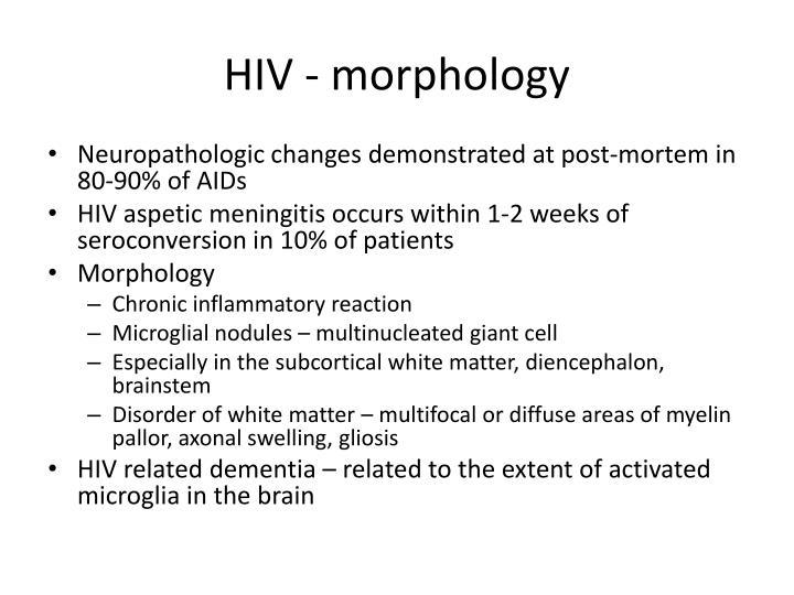 HIV - morphology