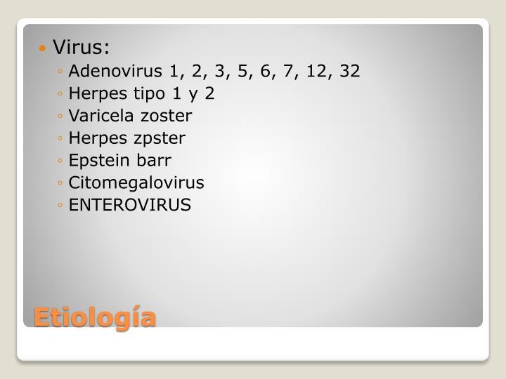 Virus: