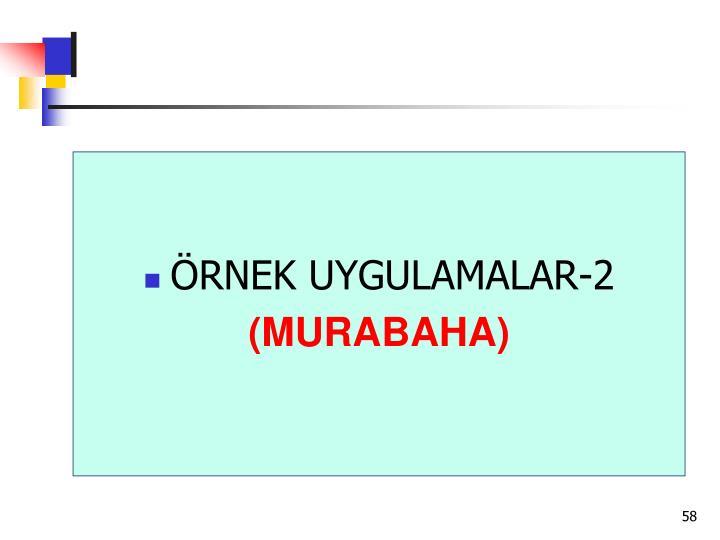 ÖRNEK UYGULAMALAR-2