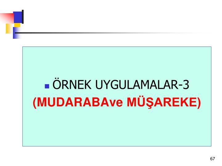 ÖRNEK UYGULAMALAR-3