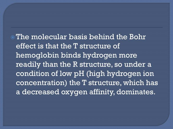 The molecular basis behind the Bohr effect is that the T structure of hemoglobin binds hydrogen more readily than the R structure, so under a condition of low pH (high hydrogen ion concentration) the T structure, which has a decreased oxygen affinity, dominates.